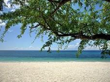 white sand beach for sale - mansalay, oriental mindoro