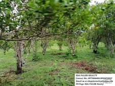 agricultural lot for sale in goa