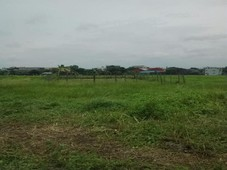 lot for sale in cainta, rizal