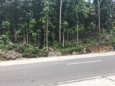 mixed use commercial vacant lot for sale at san pedro, dapitan city