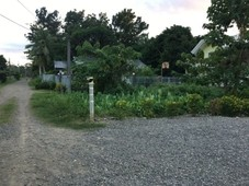 residential vacant lot in dipolog city for sale