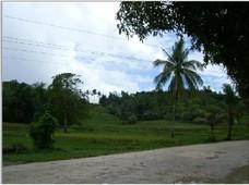 plot of land for sale catbalogan