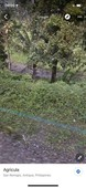 very cheap agricultural land for sale