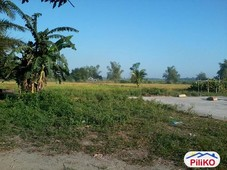 agricultural lot for sale in tarlac city