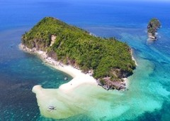 19,975 sqm titled beach front at anahwan island, sipalay city
