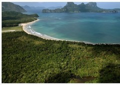 invest in lio tourism estate in the best island in the world palawan philippines