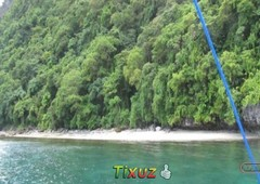 malapacao island el nido bacuit bay timberland beachfront property