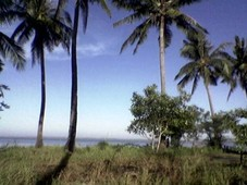 investment for sale hermosa, dasol pangasinan