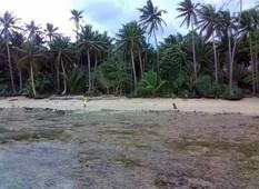 siargao island beach property for sale