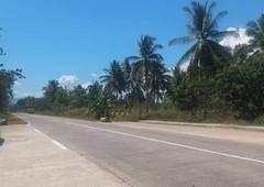 100 hectares property in zamboanga sibugay