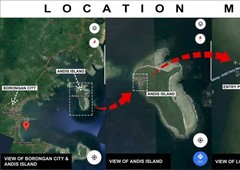 beach front lot and adjacent inner lot for sale in ando island, borongan city samar, philippines