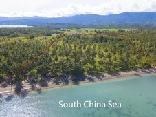 titled beach property for sale quezon, palawan negotiable