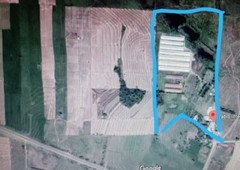 pablo integrated farm
