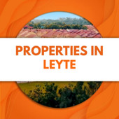 for sale house and lot in leyte