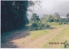 plot of land for sale busuanga palawan