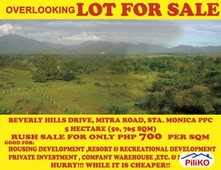 other lots for sale in puerto princesa