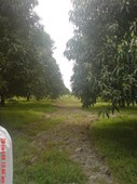 plot of land for sale magalang