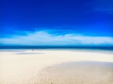 wow palawan - votd the best island in the world. partner on a amazing white sand beach also 1 hectare lots for sale - 6264424