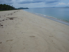 plot of land for sale san vicente