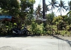 lot for sale in virac, catanduanes