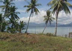 waterfront lot calubian leyte 700 sq meter - 700000