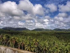 affordable 5.7 hectares land for sale in siargao