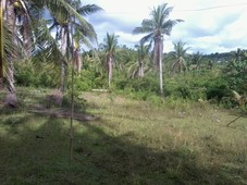 land for sale in catanduanes