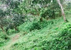 land for sale in mampili, camarines norte