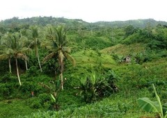 p52 per sqm raw land farm lot for sale in mindanao